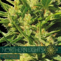 семена конопли сорт Auto Northern Lights feminized, Vision Seeds